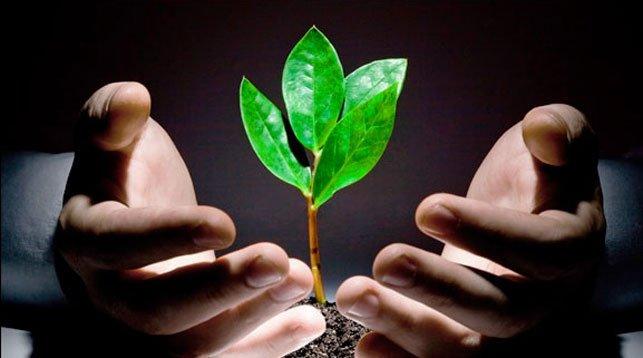 ФРТП выступил с предложениями по обеспечению экологической безопасности в процессе добычи и транспортировки  …