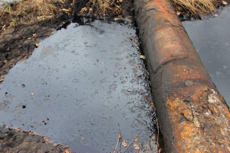Фонд развития трубной промышленности: предложения по обеспечению экологической безопасности в процессе добыч …
